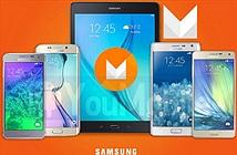Danh sách các thiết bị sẽ được lên đời Android 6.0 Marshmallow