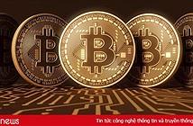 Giá Bitcoin hôm nay 6/11: Toàn thị trường khởi sắc, Bitcoin tăng nhẹ