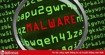 Khoảng 4,7 triệu địa chỉ IP của Việt Nam thường xuyên nằm trong các mạng mã độc lớn