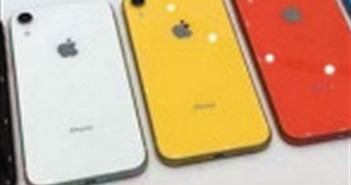 Nikkei: Apple hủy bỏ kế hoạch tăng sản lượng iPhone XR