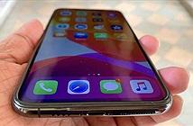 iPhone 12 sẽ sử dụng màn hình tích hợp cảm ứng của LG