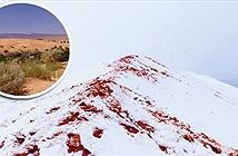 Tuyết nhuốm màu đỏ như máu bao phủ sa mạc Sahara