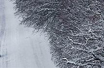 Tuyết rơi dày nhất thế kỷ, Moscow chìm trong mùa đông trắng xóa