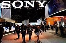 Sony cảnh báo dịch virus corona sẽ làm đình trệ ngành cảm biến hình ảnh