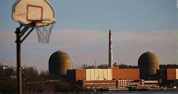 Nhà máy điện hạt nhân bị dừng hoạt động do… phân chim