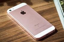 iPhone gặp lỗi nghiêm trọng, liên tục quay số khẩn cấp