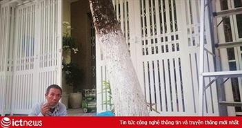 Công an trích xuất camera tìm người xịt sơn nhà cựu Viện phó VKS