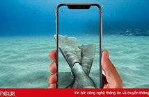 iPhone tương lai có thể sử dụng thoải mái dưới nước