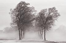 Vì sao gọi là gió mùa Đông Bắc?