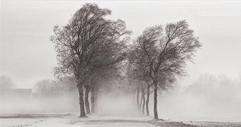 """Vì sao gọi là """"gió mùa Đông Bắc""""?"""