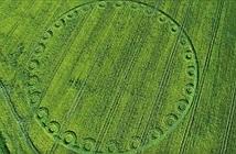Thêm vòng tròn khổng lồ nghi UFO xuất hiện ở Anh