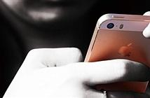 Apple sắp tung thứ này giúp người dùng bớt úp mặt vào iPhone