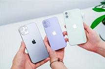 Trên tay iPhone 12 màu tím: đắt hơn 2 triệu, rất cá tính