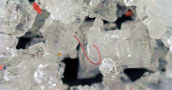 Ta nuốt vào bụng ít nhất 50.000 hạt vi nhựa mỗi năm