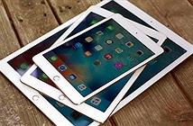 Cách kiểm tra khi mua iPad cũ