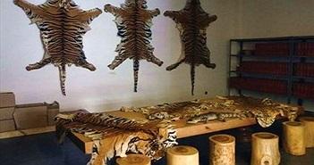 Buôn bán động vật hoang dã núp bóng trang trại thú
