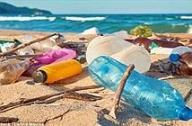 Dấu chấm hết cho thời đại rác nhựa có lẽ sắp có rồi, nhờ vào phát minh này