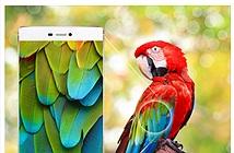 Huawei bị tố chỉnh sửa ảnh quảng cáo để smartphone P8 có viền siêu mỏng