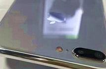 iPhone 7s Plus xuất hiện với ngoại hình đẹp, tựa iPhone 7 Plus