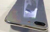 iPhone 7s lần đầu lộ ảnh với mặt lưng kính