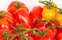 Những tác dụng phụ khi ăn quá nhiều cà chua