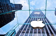 Apple sẽ đưa trí thông minh nhân tạo vào iPhone