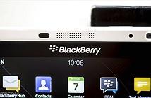 """""""Sẽ không có điện thoại BlackBerry 5G vì 5G chỉ hợp với tủ lạnh"""""""