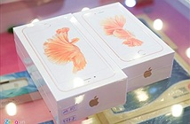 Nhìn gần iPhone 6S và 6S Plus phiên bản Việt Nam