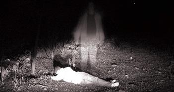 """Nghiên cứu gây sốc về ma quỷ, """"tâm linh"""" trên thế giới"""