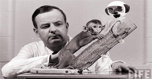 Những thí nghiệm rùng rợn nhất trong lịch sử khoa học thế giới