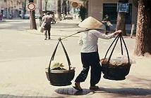 Các nhà khoa học quốc tế khám phá bí ẩn đòn gánh tre của người Việt