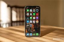 Học hỏi Samsung, Apple sẽ ra iPhone 2 lần mỗi năm?
