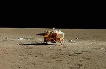 Trung Quốc sẽ đưa cây và côn trùng lên Mặt trăng năm 2018