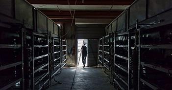 Thợ đào bitcoin dần 'di cư' ra ngoài Trung Quốc