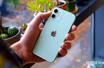 Doanh số kém, Apple sắp dừng sản xuất iPhone 12 mini?
