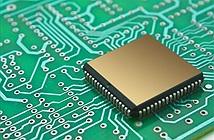 Tham vọng chế tạo chip máy tính thông minh hơn Einstein 50 lần