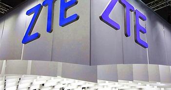 ZTE tìm cách yêu cầu chính quyền Mỹ đình chỉ lệnh cấm