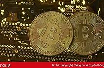 Giá Bitcoin hôm nay 8/5: Đi xuống đầy bất ngờ