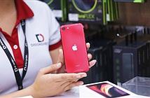 iPhone SE 2020 và top 5 iPhone cũ có mức giá hấp dẫn 5 đến 14 triệu