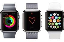 Dùng Apple Watch một năm, thu lại đúng số tiền đã bỏ ra