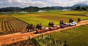 Ford Việt Nam tiếp tục tăng trưởng với hơn 2400 xe bán ra trong tháng Năm