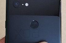 Pixel 3 XL lộ ảnh thiết kế mặt sau: vui buồn lẫn lộn