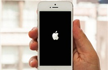 Hàng loạt người dùng lên mạng tố iPhone gặp lỗi khởi động lại