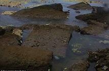 Thành phố cổ đại bỗng nhiên hiện nguyên hình trên bờ biển sau thủy triều