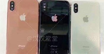 iPhone 8 sẽ có thêm tùy chọn màu vàng đồng mới