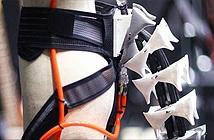 Các nhà khoa học Nhật chế tạo một chiếc đuôi máy cho con người