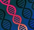 Các nhà khoa học phải đổi tên mã gene của con người, vì phần mềm Excel liên tục đọc sai thành dạng ngày tháng
