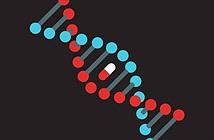 Không chỉ xác nhận huyết thống, xét nghiệm ADN còn dự báo cả nguy cơ bệnh tật và tuổi thọ