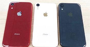 iPhone 9 xuất hiện với 4 màu rực rỡ và SIM kép