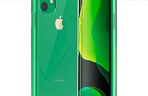 iPhone 11 sẽ trở nên cực hot với hàng loạt tùy chọn màu mới